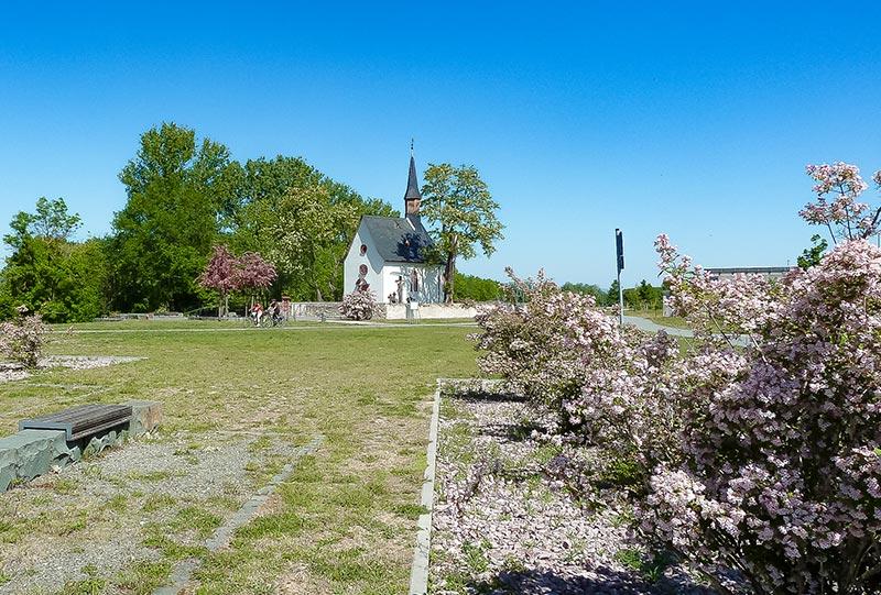 Blütenfarben an der Mönchhofkapelle 2020