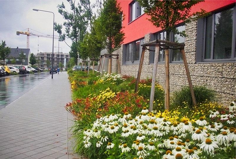 Grünfläche an der Straße